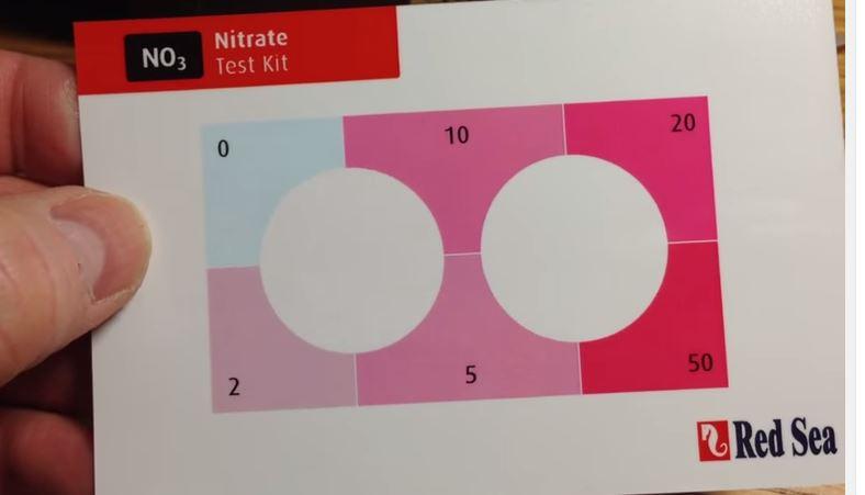 Nitrate test.JPG