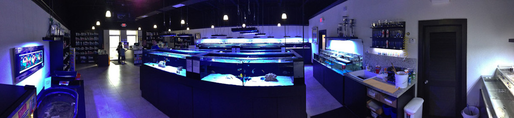 ocean-view-aquarium-1.jpg