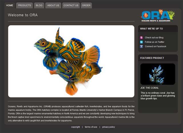 ORA-new-website.jpg