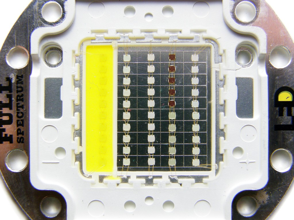 P5180004-1024x768.jpg