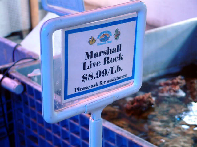 pr_marshall.jpg