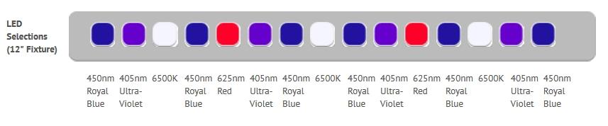 Purple-Reef-Spectrum.jpg