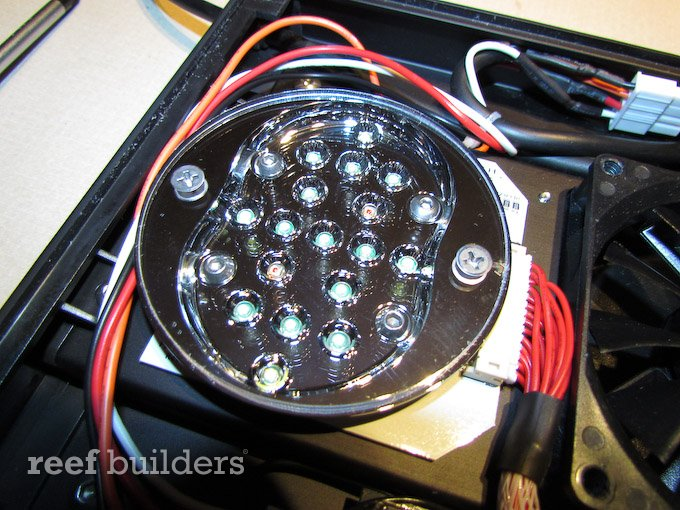 radion-led-ecotech-10.jpg