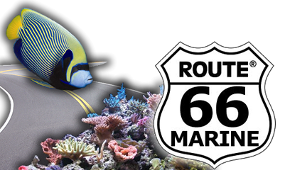 route66marine_logo.png