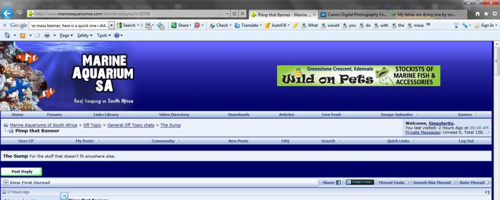 Screen12copy.jpg
