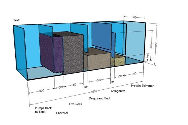 SeanSumpTank02REG-1.jpg