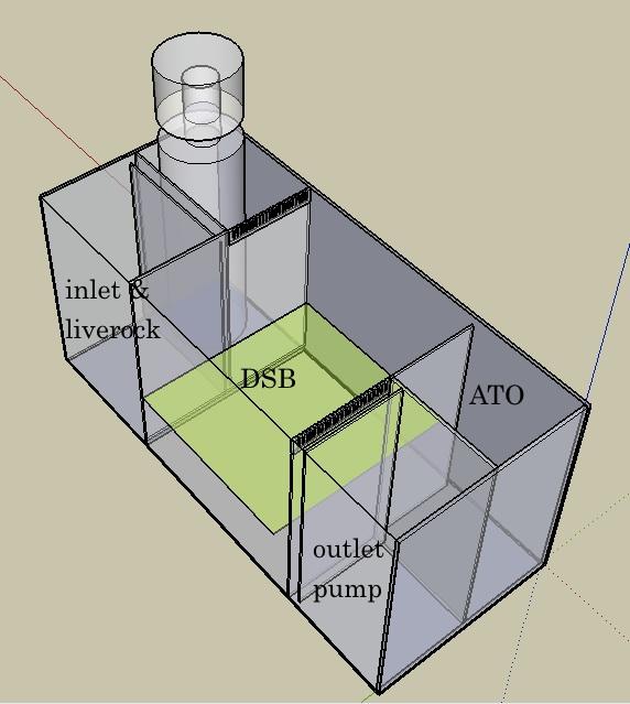 skimmer 1.jpg