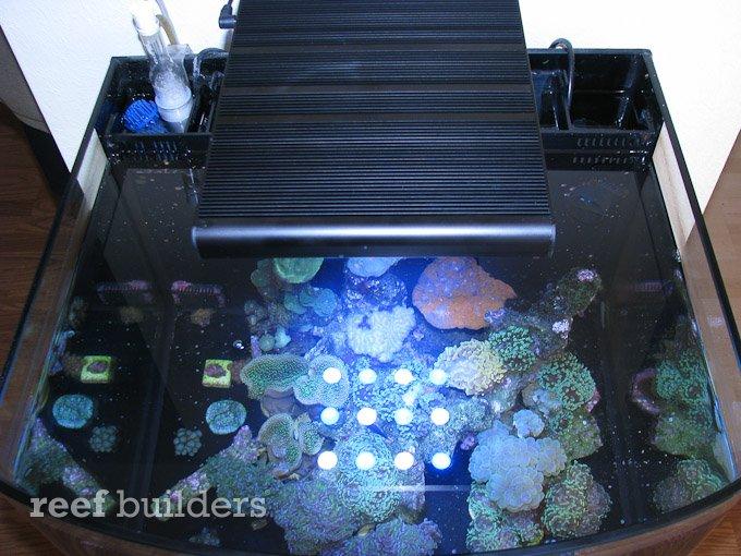 slimline-led-reef-light-4.jpg