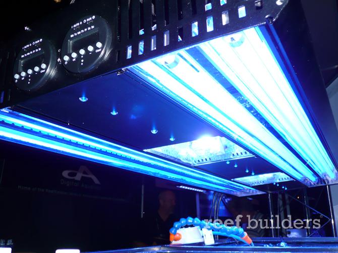 sunlight-supply-maristar-2-hqi-lights.jpg