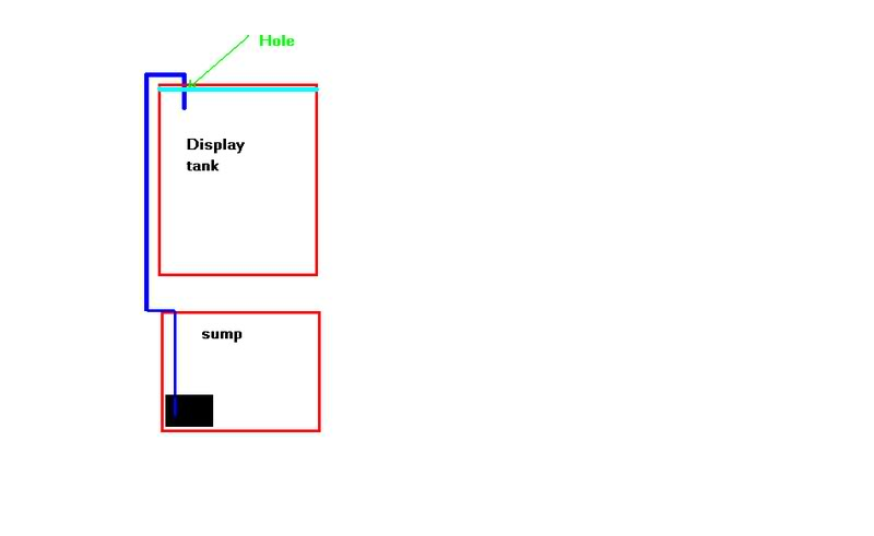 tanksumsyphon.jpg