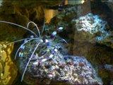 th_Screen_20121015_182841.jpg