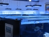 thumbs_ocean-view-aquarium-9.jpg
