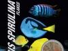 thumbs_probiotic-mysis-spirulina-flake-food.jpg