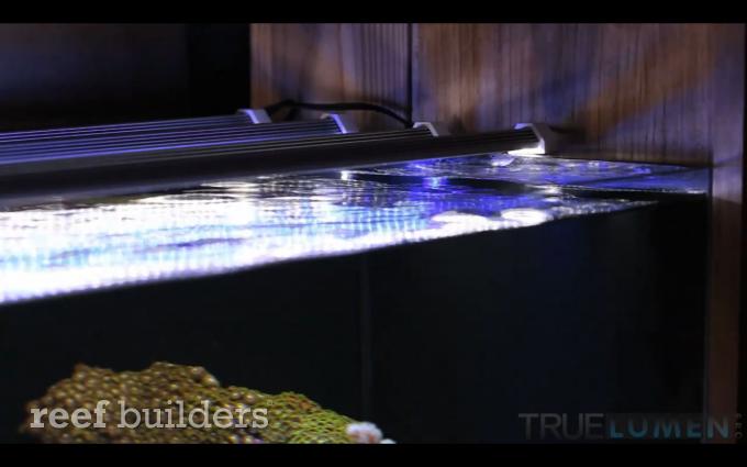 true-lumen-pro-4.png
