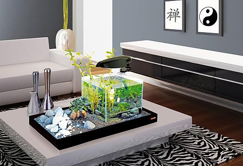 Zen-Artist-wohnzimmmer-bann.jpg