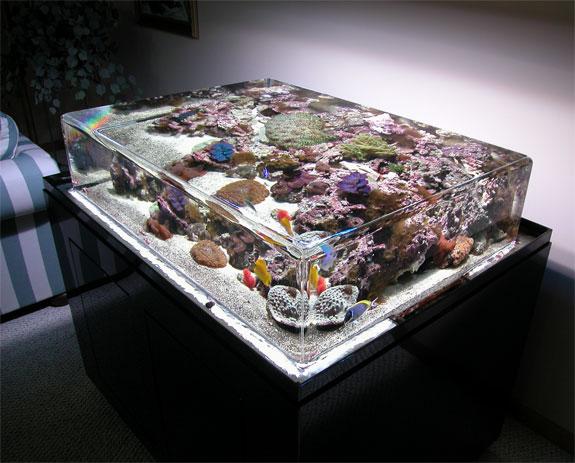 zero-edge-aquarium-1.jpg