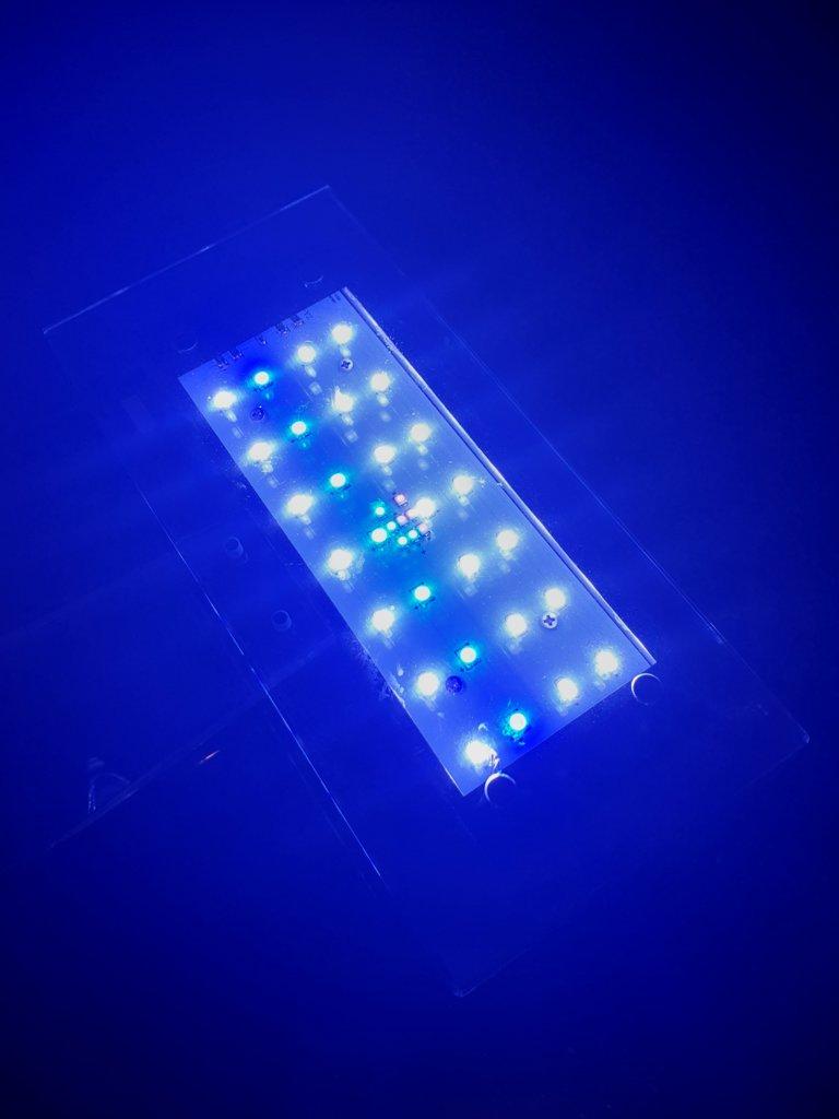 Zet light 2.jpg