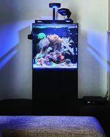 Red sea max nano 75litre