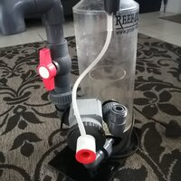 Reef Octopus protein skimmer for sale.