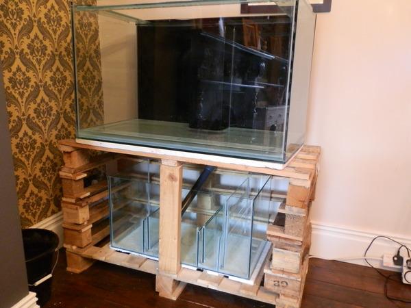 Budget fish tank stand marine aquariums south africa for Pallet aquarium stand
