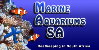 MASA - Marine Aquariums of South Africa