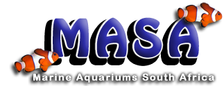 Marine Aquariums South Africa